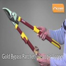 Kingfisher RC203 Extendable Loppers