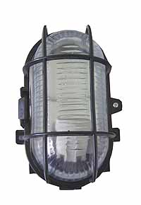 Oval Glass 60W Bulkhead Lamp with Guard