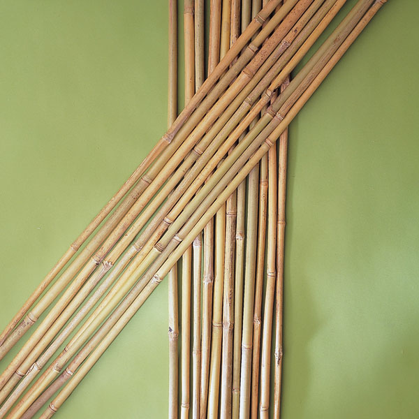 Pack of Bamboo Canes: 3 - 4 - 5 - 6 - 7 - 8 Foot Length