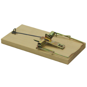 Luna Wooden Mouse Trap Assorted Pack Sizes