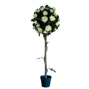 4ft Rose Tree  Assorted Colours PPCT