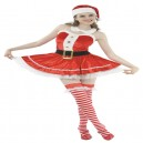 Santa Lady Deluxe - Mrs Claus Fancy Dress Costume